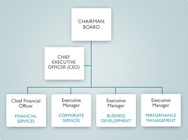 management-structure